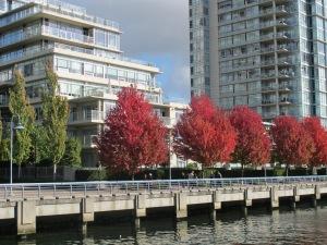 Vancouver.FalseCreekNorthNeighbourhood.Fall2011